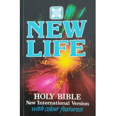 Bible anglická - New Life - New International Version 1988 (used)